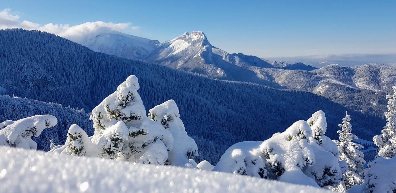 Jak Postępować W Górach Praktyczne Porady Zakopane I Piękno Tatr