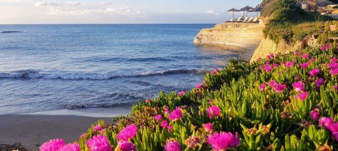 Korfu kwitnąca zielona wyspa