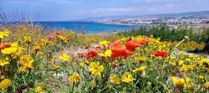 Czterodniowy wypad na Cypr